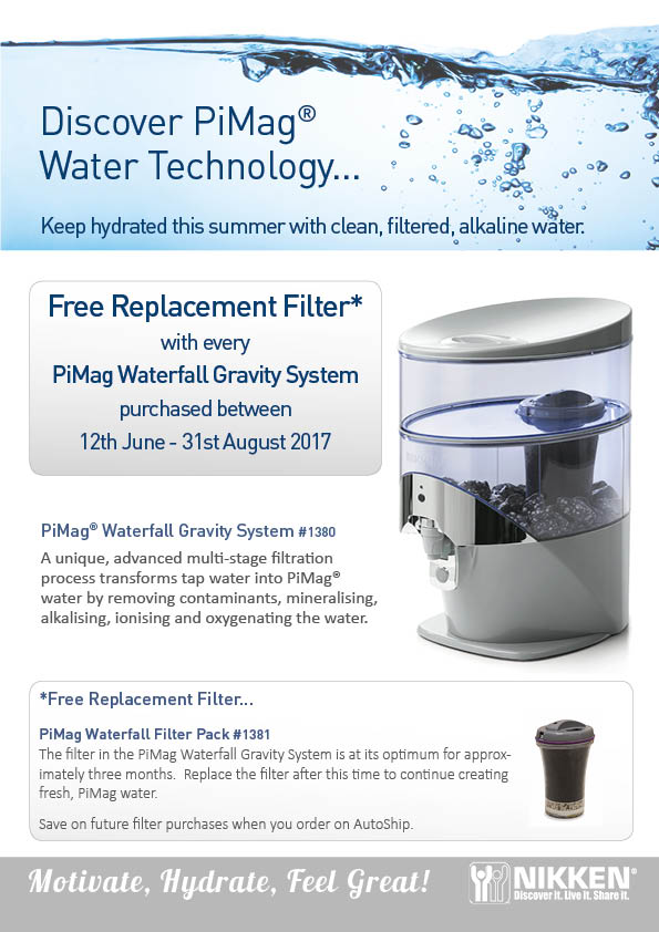 Free-Replacement-Filter-Offer