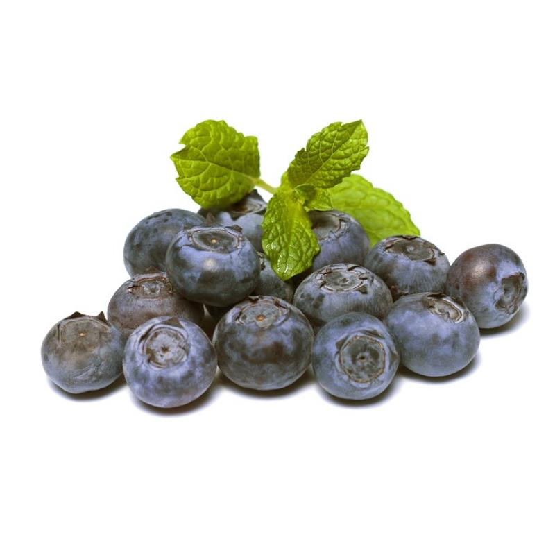 organic blueberry ciaga juice nikken