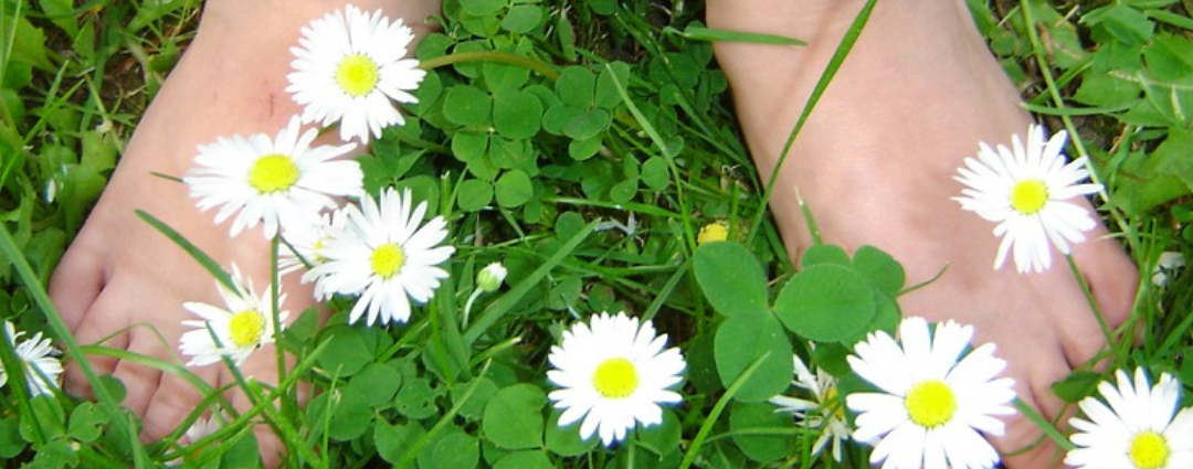 Grounding for Allergies